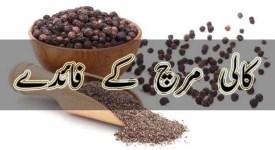 kali mirch faide in urdu