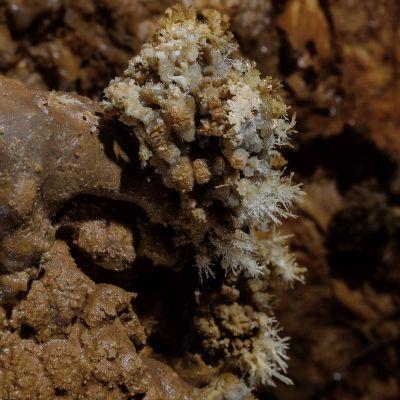 Aragonitni kristali na dnu brezna Beli cvet / Aragonite crystals at the bottom of the Beli cvet pit (-610 m)