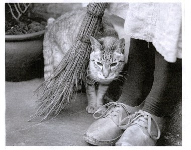 Clogs, Cat and Broomstick Poster