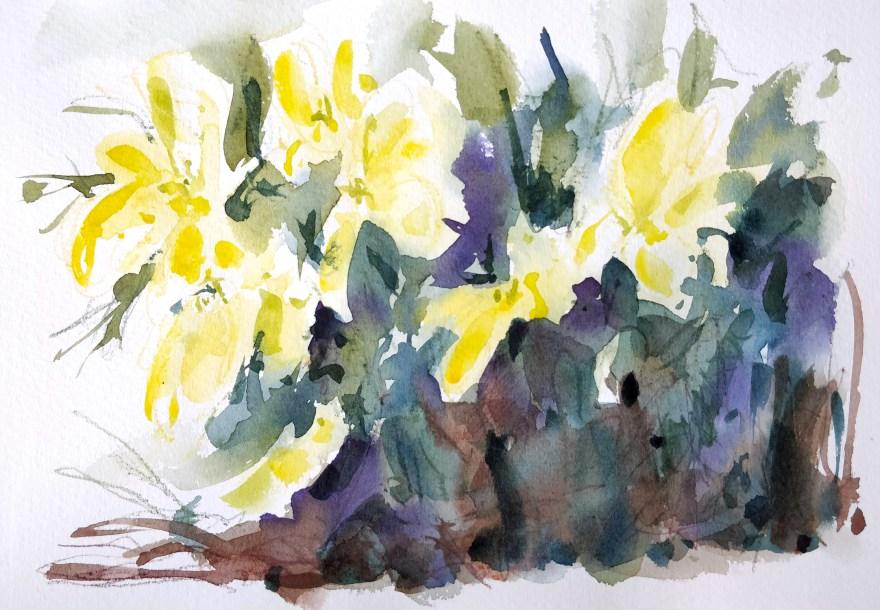 Anémones à l'aquarelle et crayons aquarellables
