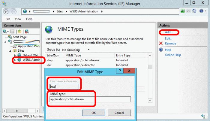 error-31-0x8024200d-wsus-upgrade-stuck-iis-mime-type