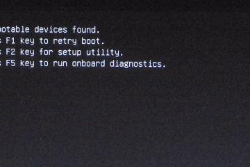 dell-no-boot-device-f1-f2-f5-black-screen