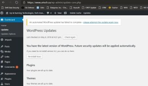 wordpress update has failed to complete - reinstall