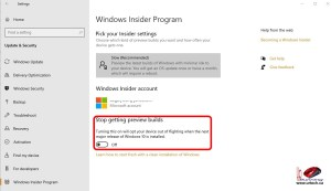 Windows 10 Flighting Insider Program