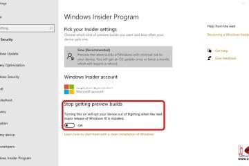 Windows 10 Flighting Insider Program