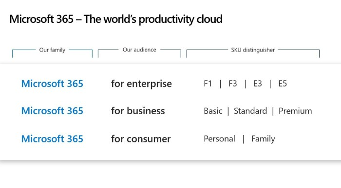 MS Office 365 Microsoft 365 for business consumer enterprise Naming Convention