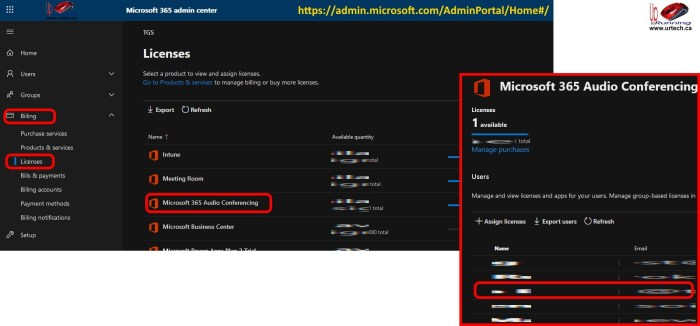 Microsoft Teams Audio Licenses