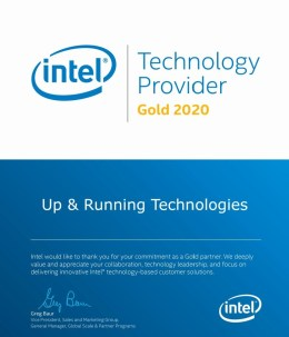 Intel Technology Provider Gold 2020