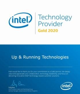 Intel Technology Provider Gold 2020