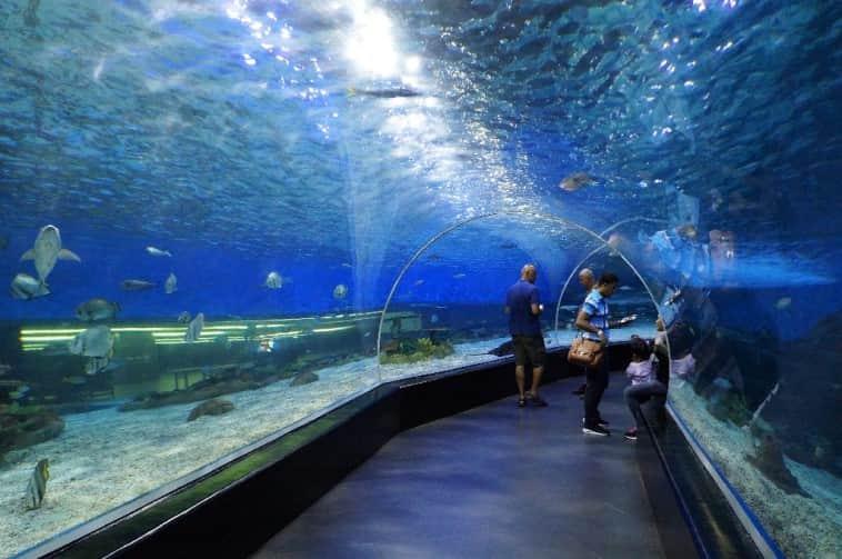 حديقة المحيط من اجمل الاماكن في مدينة مانيلا التي يجب ان تزورها