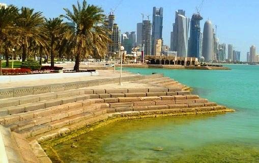 الأسماك في سواحل كورنيش الدوحة