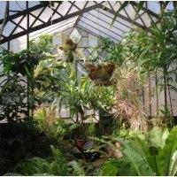 Uruguay y su Jardín Botánico en Montevideo