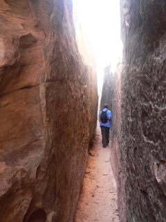 Joint Trail Narrows