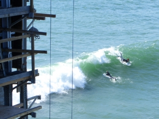 Crazy Surfers Under the Bridge