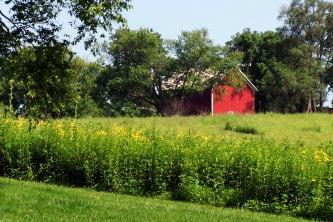 Lovely Iowa
