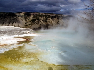 Hot Springs at Yellowstone NP