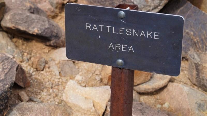 Achtung Klapperschlange im Saguaro Nationalpark
