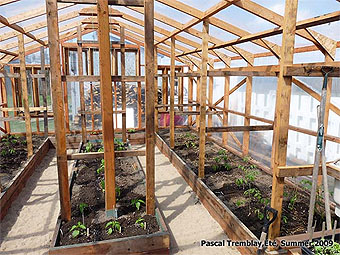 Build Wood Greenhouse   USA Plastic and Polycarbonate Greenhouse Wooden Greenhouse Plans   How to build wood Greenhouse   DIY wood greenhouse