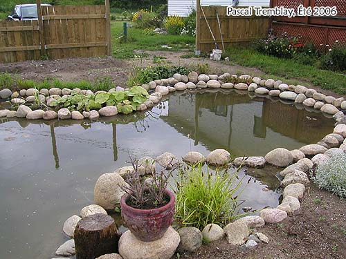 Design Ponds Products