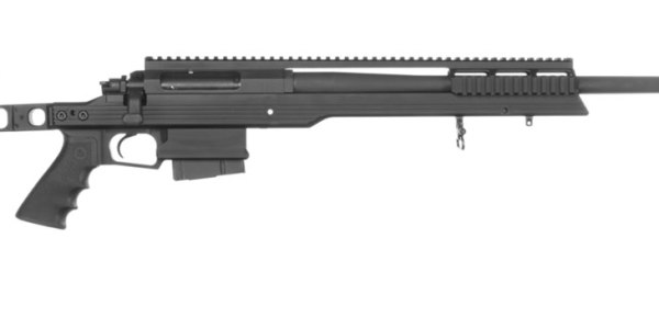 Armalite AR31 is a great target shooting .308 Rifle