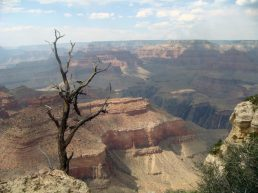 Die tiefe Schlucht des Grand Canyon in Arizona (South Rim)