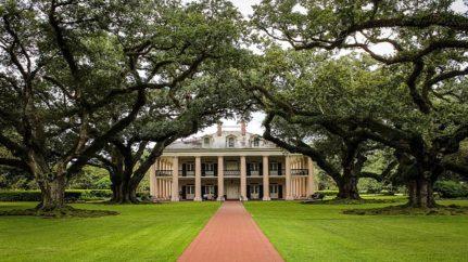 Typische Südstaaten-Plantage, die Oak Alley Plantation in der Nähe von New Orleans, USA. (Bild: pixabay.com)
