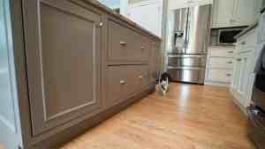 Kitchen Cabinets/Designing in Vienna, VA