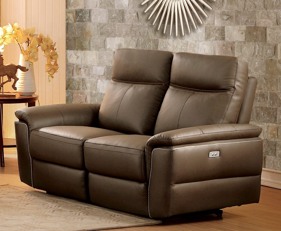 Olympia Top Grain Raisin Leather Power Double Reclining