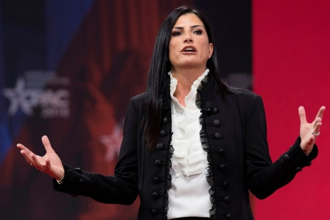 Dana Loesch Net Worth