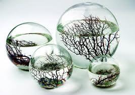 ecosphere