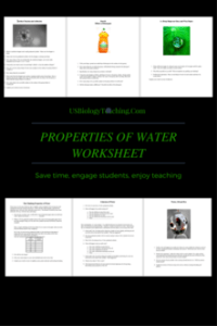 Properties of Water Worksheet