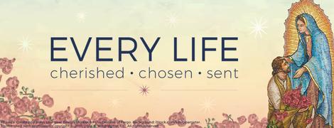 Respect Life Program 2018 - Theme Web Banner