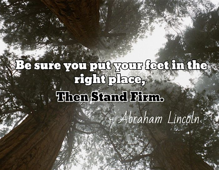 Image result for pictures of standing firm