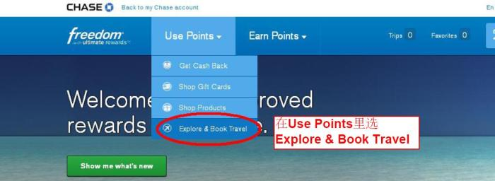Chase rent car 1 - use