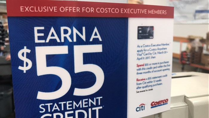 Costco Citi Visa Rental Car Insurance Europe