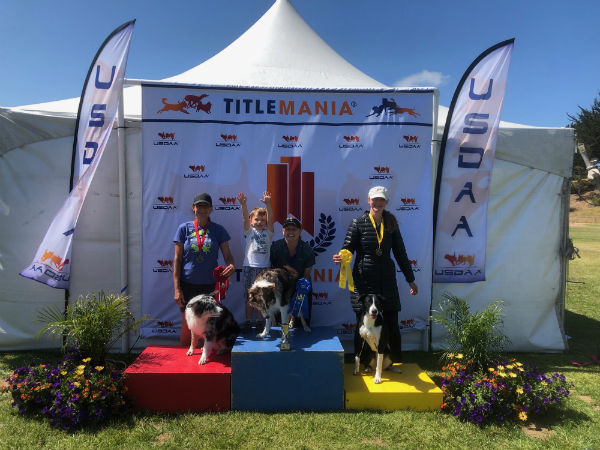 2018 Jumpers - Performance Masters Challenge