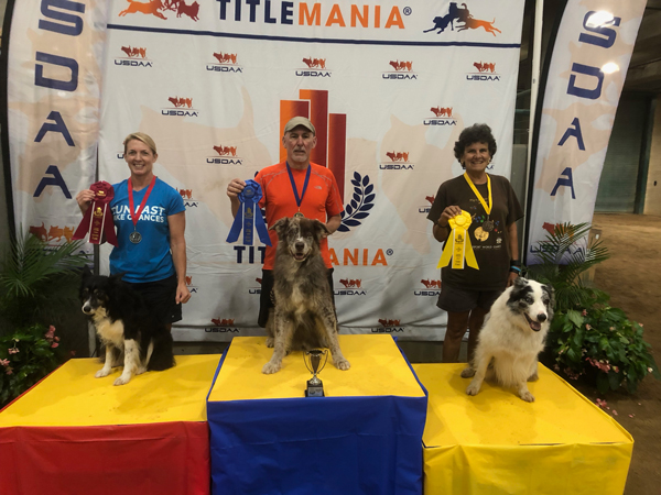 Title Mania East 2018 Veterans Jumpers