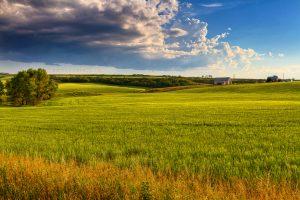 Do USDA loans have an acreage limit?