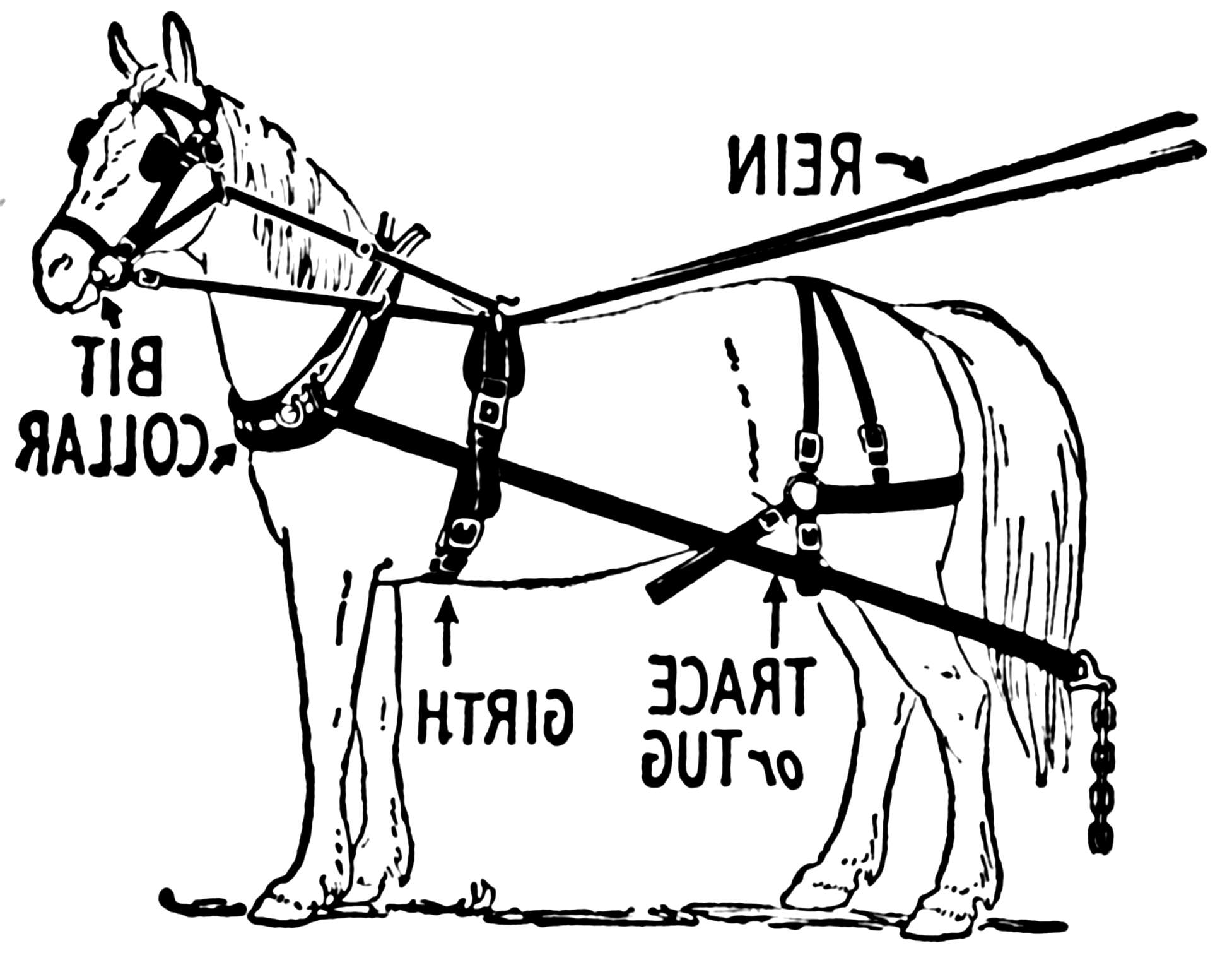 Horse Plow Harness For Sale