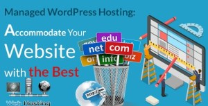 Managed WordPress Hosting: Accommodate Your Website with the Best