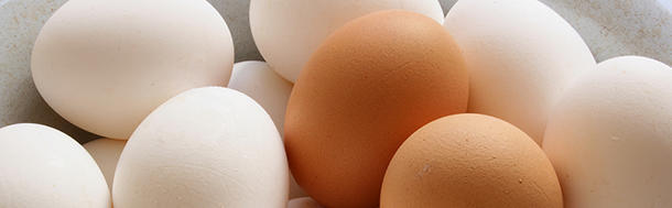 How much of digestible protein does a cooked egg have?