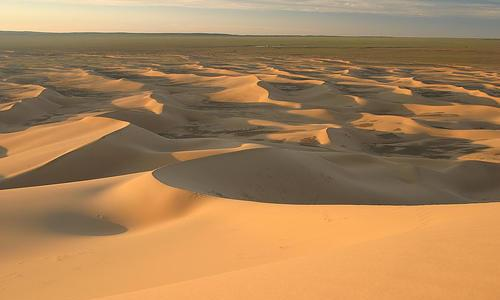 Which is the largest desert in the world?