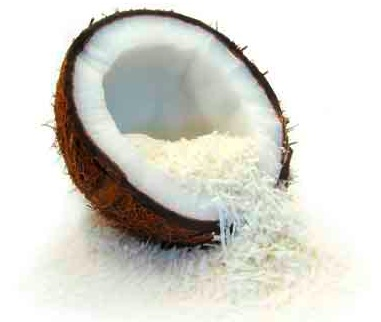 Top  Benefits of Dried Coconut Uses