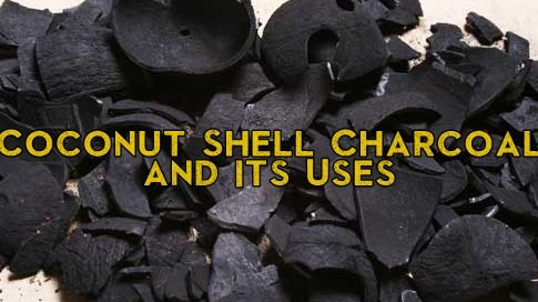 Coconut Shell Charcoal and Its Uses