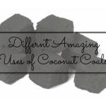 coconut coals