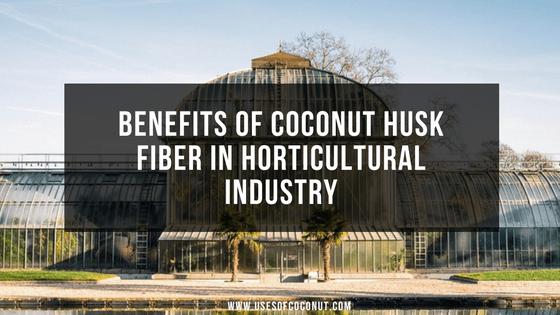 Coconut husk fiber