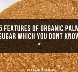 Organic Palm Suga