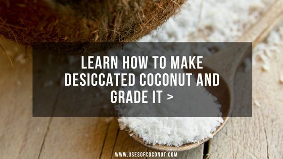 How To Make Desiccated Coconut And Grade it : Comprehensive