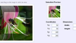 Image Cropping With imgAreaSelect jQuery Plugin