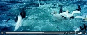 VideoJS, Opensource HTML5 video player with CSS skins